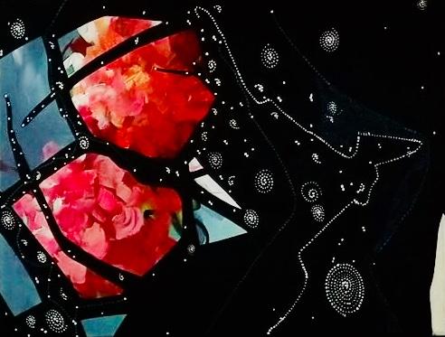 Lommen- Chysanthemum Nebula 2016